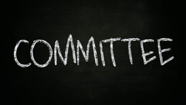 SA/NT Chapter Committee 2019