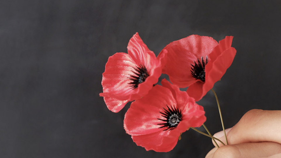 Reflection on Anzac Day 2020
