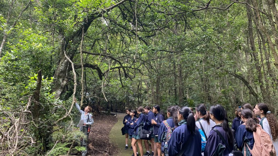 Year 9 geographers go into the wild